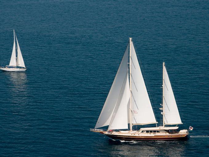 charter-daima03