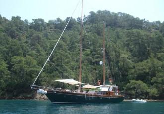 charter-freya14