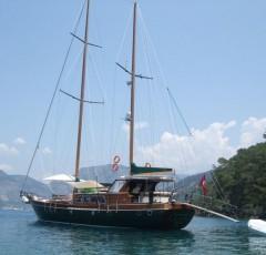 charter-freya15