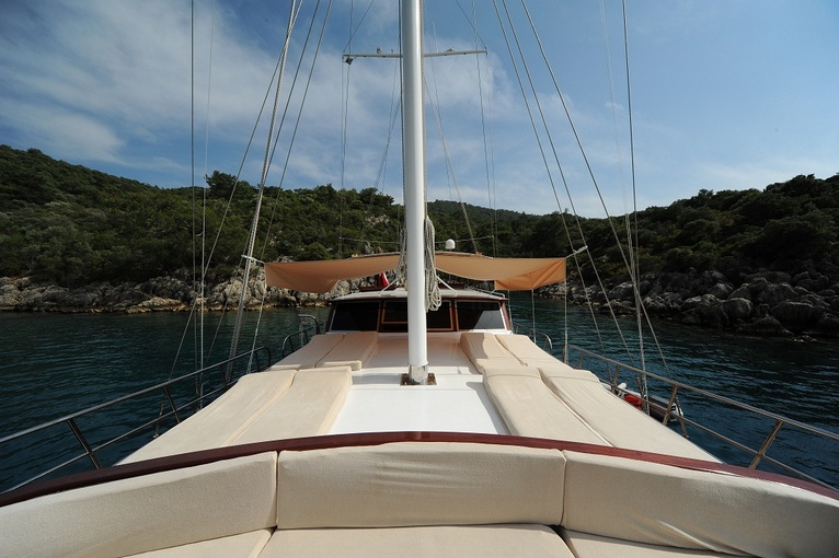 charter-hasay14
