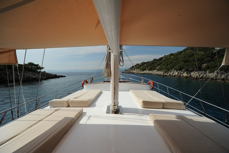 charter-hasay15