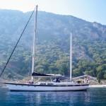 charter-irwin6504
