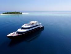 charter-azalea-01