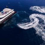 charter-azalea-02