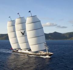 charter-maltese-falcon-01