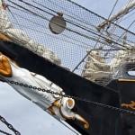 charter-signora del vento-29