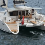 charter-whale-13