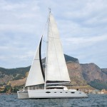 charter-whale-14