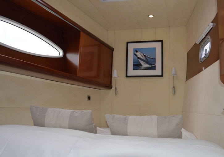 charter-whale-15