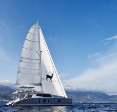 charter-bluedeer2-01